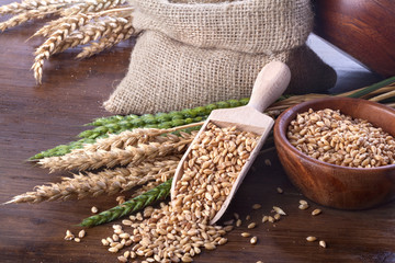 Ripe and green wheat  with a wooden spatula and bowl