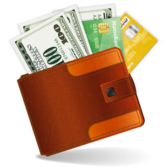 Purse with Dollars and Credit Cards