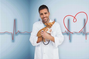 Composite image of vet holding chihuahua