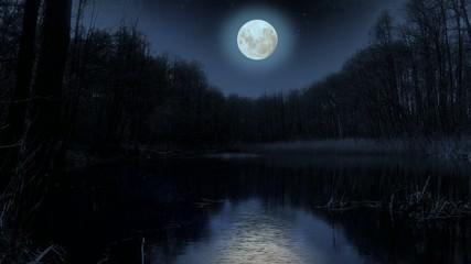 Moon over the lake at night