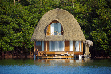 Thatched bungalow over water