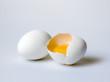 Chicken white egg