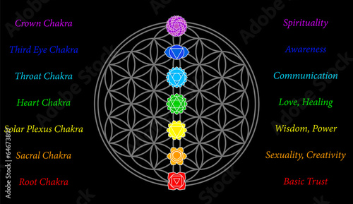 Flower of Life Chakras Description Black
