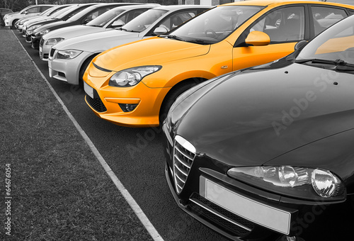 Fototapeta Perfect car selection