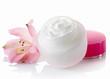 Cosmetic cream - 64685250