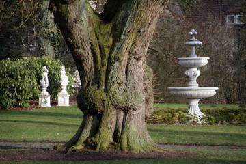 Schlosspark Alverdissen