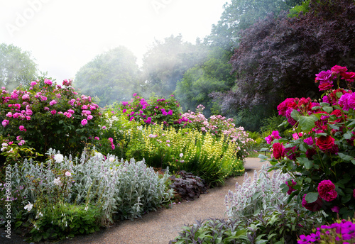 Foto op Canvas Europese Plekken Art flowers in the morning in an English park