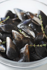 Raw fresh mussles with thyme sprigs