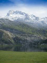Ercina lake, mountain lake, national park asturias