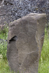 Native Indian Scorpion Petroglyph
