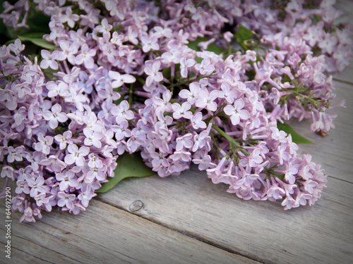 Foto op Canvas Lilac Lilac on weathered wood