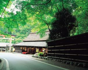일본 여행