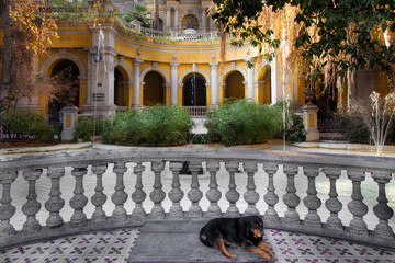 Dog sleeping in a courtyard of a park on Santa Lucia Hill, Santi