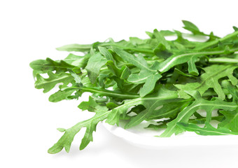Salad green ruccola (arugulla)