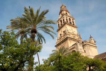 Mezquita-Cathedral of Cordoba (Spain)