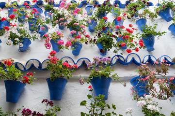 Festival de los Patios Cordobeses (España)