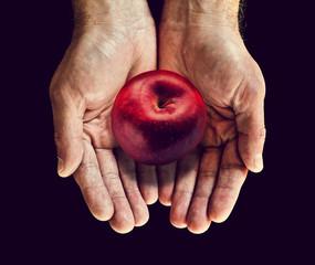 catch falling apple