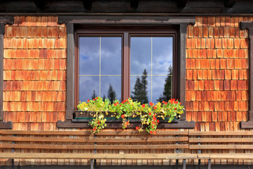 Picturesque popular cafe window with flower pots