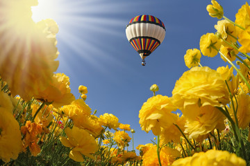 The spring sun shines flying balloon