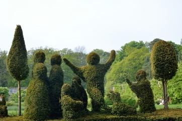 Formal garden topiary