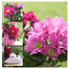 Collage mit Chrysanthemen und Herz