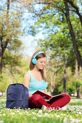 Young woman studying in park