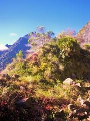 Montagne à Mafate