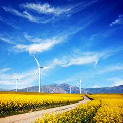 Wind turbines on spring field. Natural, clean source of energy