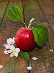Apfel mit Apfelblüten auf Holz