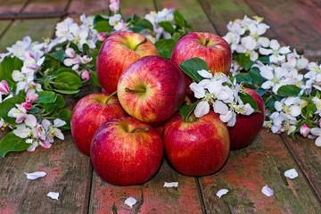 Äpfel und Apfelblüten auf Holz