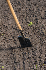 toil work of ground. spade insert soil
