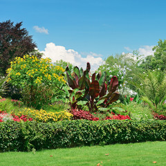 picturesque lawn in the park