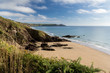 Sharrow Point Cornwall England - 64731053