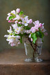 Still life with a branch  of blossoming apple tree