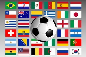 Fußball WM Teilnehmerländer 2014