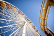 Ferris Wheel and Roller Coaster - 64735695