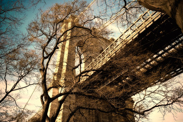 Brooklyn Bridge Through Winter Tree Branches