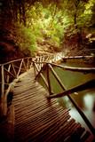 Wooden Footbridge Through Forest - 64736610