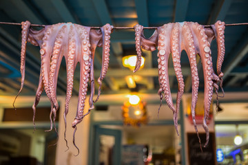 Fresh Caught Octopi Drying - Naxos, Greece