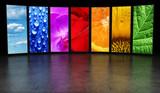 Rainbow of images background