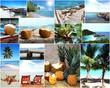 Thailand-Collage