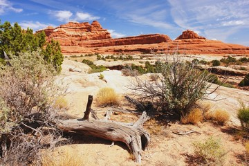 The Needles, Canyonlands National Park, Utah