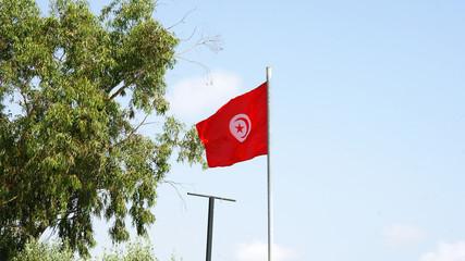 Bandera de la república de Túnez, Norte de África