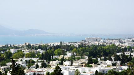 Ciudad de Túnez
