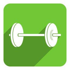 gym flat icon
