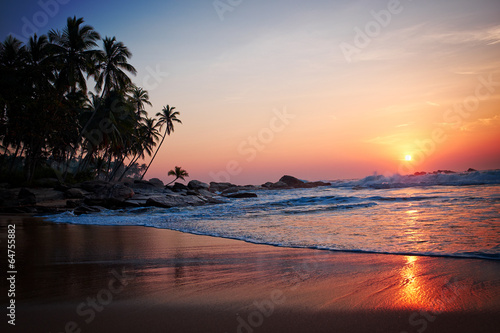 Foto op Aluminium India Tropical beach