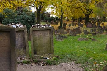 Grabsteine auf dem Jüdischen Friedhof Worms