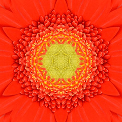 Orange Concentric Flower Center Mandala Kaleidoscopic design