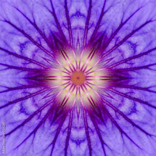 Foto op Aluminium Dahlia Purple Concentric Flower Center Mandala Kaleidoscopic design
