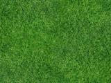 Rasenfläche - 64757462